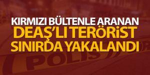 DEAŞ'lı terörist yakalandı