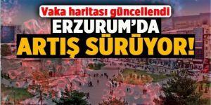 Mavi olduk ama: Erzurum'da korkutan artış !